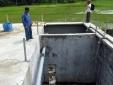 Phú Yên: Người dân nghi doanh nghiệp xả thải khiến tôm hùm chết hàng loạt