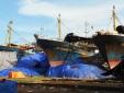 Công bố mới nhất kết quả thẩm định chất lượng tàu vỏ thép Bình Định