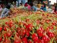 Tháo gỡ rào cản, đẩy mạnh xuất khẩu nông sản Việt sang Úc