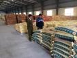 Thủ tướng yêu cầu khẩn trương điều tra việc sản xuất, kinh doanh phân bón giả