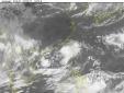 Tin tức mới nhất về cơn bão số 3 - cơn bão Roke di chuyển theo hướng Tây Bắc