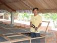 Kỹ thuật nuôi rắn ráo trâu cho người nông dân thu bội tiền