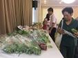 Hà Nội: Tăng cường kết nối cung cầu tiêu thụ rau an toàn