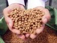 Quy định về quản lý chất lượng thức ăn chăn nuôi, thủy sản