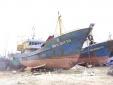 Vụ tàu vỏ thép hư hỏng: Doanh nghiệp đòi kiện Bộ NN-PTNT và chủ tàu