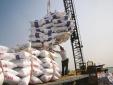 Xuất khẩu, nhập khẩu phân bón phải tuân thủ các quy định về chất lượng