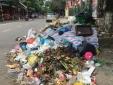 Vụ Sơn Tây 'ngập' trong rác thải: Càng tồn đọng lâu, người dân càng chịu ảnh hưởng nghiêm trọng