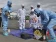 Bình Thuận: Báo cáo bước đầu về kết quả thanh tra an toàn bức xạ hạt nhân