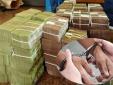 Truy tố một loạt cán bộ của Tổng Công ty Cổ phần cà phê Việt Nam