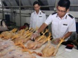 Hà Nội: Xử lý 26 trường hợp vi phạm an toàn thực phẩm, thu hơn 180 triệu đồng
