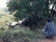 Cố lái xe băng qua đường sắt, người đàn ông bị tàu hỏa đâm tử vong