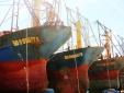 Vụ tàu vỏ thép hư hỏng, gỉ sét: Khởi kiện ra tòa nếu không đền bù