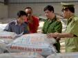 'Siết' quản lý chất lượng phân bón, thuốc bảo vệ thực vật