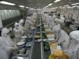 Nhờ 'cách mạng' về an toàn thực phẩm, DN giảm hơn 90% chi phí, tiết kiệm 10 triệu ngày công