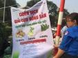 Người dân Hà Nội 'giải cứu' củ cải, khoai tây, su hào cho nông dân