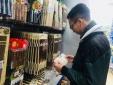 Cách chọn đũa ăn dùng một lần không 'ngậm hóa chất' cho niềm vui trọn vẹn dịp 30/4