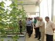 KH&CN thúc đẩy phát triển nông nghiệp công nghiệp hóa hành lang đường HCM vùng Bắc Trung Bộ