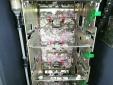 Hy hữu hơn 400 triệu đồng trong máy ATM bị chuột cắn nát thành đống giấy vụn