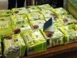Hà Tĩnh: Phát hiện 52 bánh heroin và 25 kg ma túy đá bằng máy quét an ninh