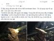 Thông tin bất ngờ về người tuyên bố tìm thấy 3 tấn vàng trong hang đá ở Lạng Sơn