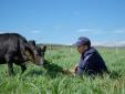 Trang trại bò sữa tại cần thơ - Bước phát triển nâng tầm chiến lược