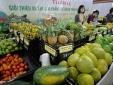Cơ hội kết nối, hợp tác nâng cao giá trị sản phẩm nông sản Việt Nam