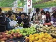 Hà Nội: Khởi động 'Ngày Quyền của người tiêu dùng Việt Nam' năm 2019