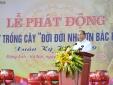 Thủ tướng dự lễ phát động 'Tết trồng cây đời đời nhớ ơn Bác Hồ'