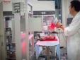 Chữa bỏng bằng công nghệ 'photocopy'