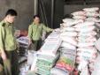 Phát hiện hơn 9.000 kg phân bón hạt dạng khô không nhãn phụ tiếng Việt