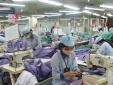 Dệt may cần khai thác nguồn vải từ EU, Hàn Quốc để tăng xuất khẩu vào EU