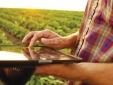 Blockchain - Lời giải cho bài toán xuất khẩu nông sản