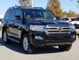 Bán ế 16 xe/năm, chiếc ô tô Toyota này vẫn tăng giá hơn 300 triệu đồng/chiếc tại VN