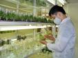 Giải mã 'điểm nghẽn' trong quá trình tăng năng suất lao động Việt Nam