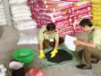 Sản xuất, kinh doanh phân bón và thuốc bảo vệ thực vật kém chất lượng ngày càng tinh vi
