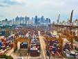 Giảm 9,3% tổng giá trị xuất nhập khẩu hàng hóa trong tháng 6/2019