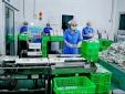 Triển khai mạnh hoạt động quản lý tiêu chuẩn, quy chuẩn kỹ thuật tại các địa phương