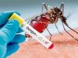 Sở Y tế Hà Nội cảnh báo dịch sốt xuất huyết vào mùa cao điểm
