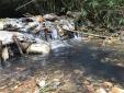 Thủ tướng chỉ đạo khẩn trương điều tra, làm rõ nguồn nước sạch sông Đà bị ô nhiễm