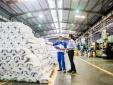 Toàn cảnh nhà máy công nghệ 4.0 Tân Á Đại Thành Hà Nam