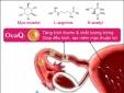 Thực phẩm bảo vệ sức khoẻ SpermQ–OvaQ1: Quảng cáo lừa dối người tiêu dùng?