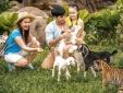 Vinpearl Safari đăng cai tổ chức hội nghị bảo tồn và phúc trạng động vật lớn nhất Đông Nam Á