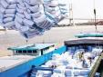 Bộ NN&PTNT: Xuất khẩu gạo dự báo khó khăn trong thời gian tới