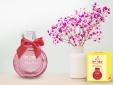 Mỹ phẩm Đăng Dương: Dòng nước hoa One Today khẳng định giá trị thương hiệu Việt