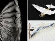 Robot đầu tiên uốn cong đôi cánh bay lượn như chim