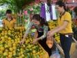 Giải pháp nào thúc đẩy thương hiệu, tăng sức cạnh tranh cho nông sản Việt?