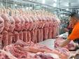 Nhiều doanh nghiệp chăn nuôi giảm giá thịt lợn