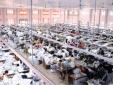 Áp dụng hệ thống cải tiến, nâng cao năng suất giảm thiểu lãng phí