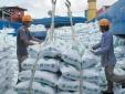 Dịch Covid-19: Chỉ thị khẩn của Bộ Công Thương về tăng cường xuất nhập khẩu