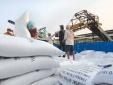 Bộ Công Thương giữ nguyên đề xuất xuất khẩu 400.000 tấn gạo trong tháng Tư